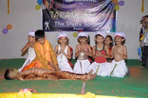 Annual Function (17)