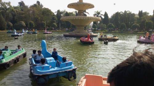 udaipur-trip (15)